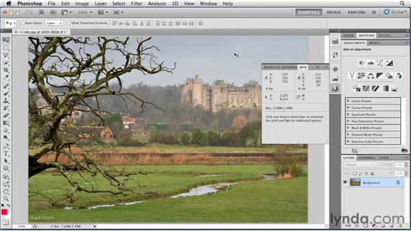 Evaluating color with the Info panel: Photoshop for Designers: Color (2012)