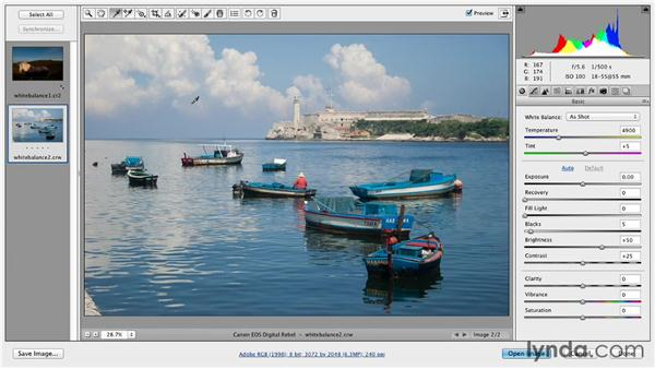 White balancing in Camera Raw: Photoshop for Designers: Color