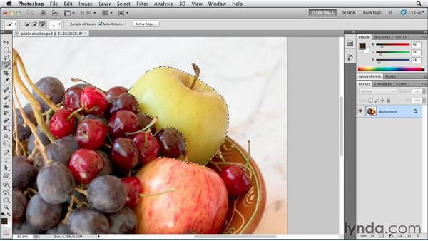 Selecting color with the Quick Selection tool: Photoshop for Designers: Color
