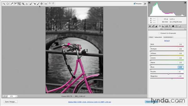 Desaturating in Camera Raw: Photoshop for Designers: Color (2012)