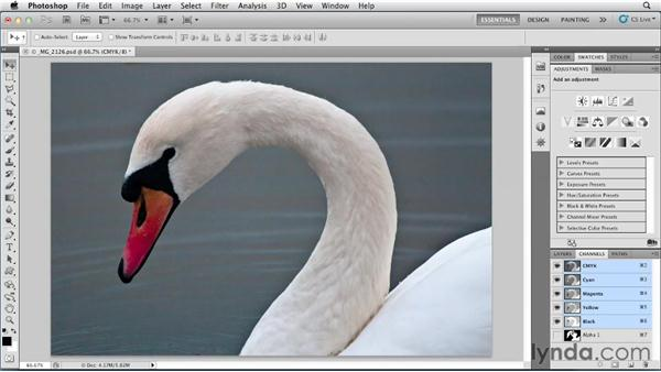 Create a metallic print effect: Photoshop for Designers: Color