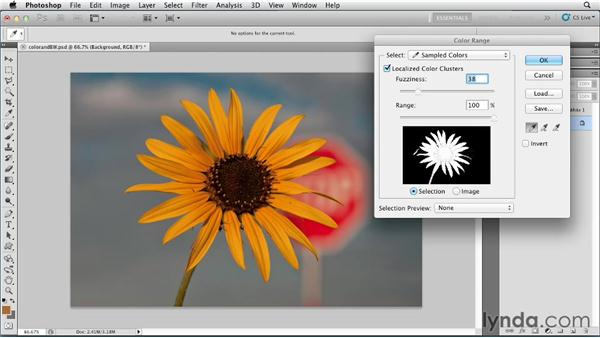 Combining color with black and white: Photoshop for Designers: Color (2012)