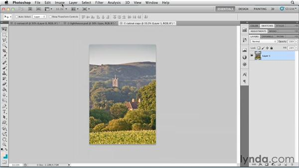 Mapping an image to a color look up table (CLUT): Photoshop for Designers: Color