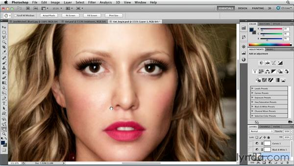Color tinting an image: Photoshop for Designers: Color