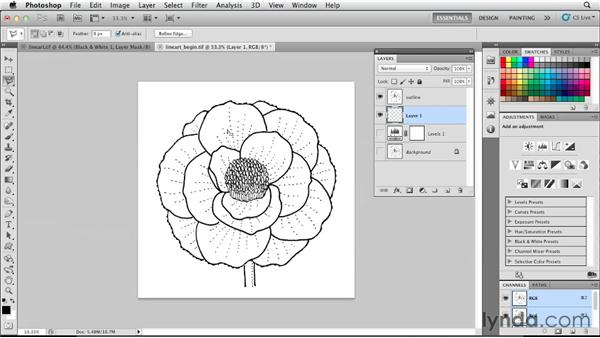 Working with line art: Photoshop for Designers: Color (2012)