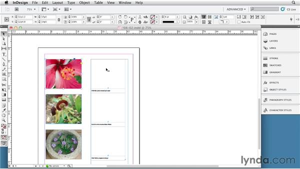 Setting up images and captions with tables: InDesign Tables In Depth (2012)
