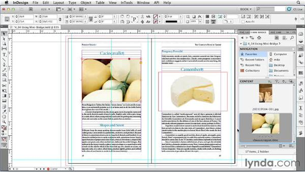 Using Mini Bridge: Creating Long Documents with InDesign