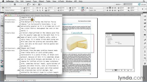 Using Notes: Creating Long Documents with InDesign