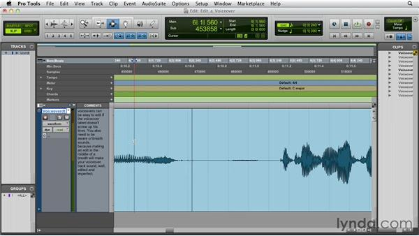 Editing a voiceover: Pro Tools 10 Essential Training