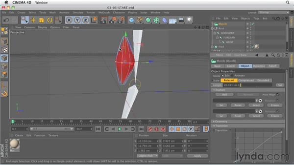 The newly designed Muscle system: CINEMA 4D R13 New Features