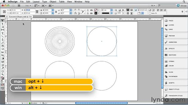 028 Drawing Concentric Shapes: InDesign FX