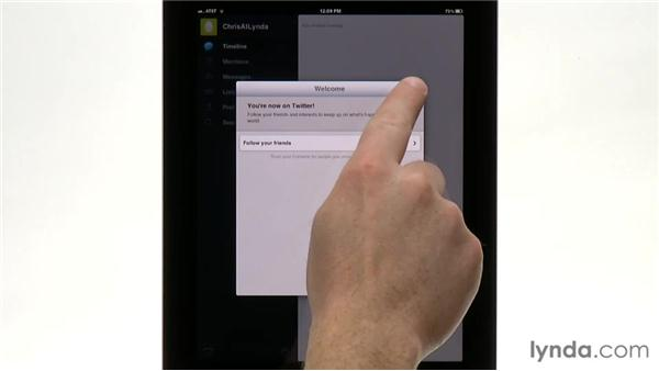 Configuring Twitter and sending Twitter updates from multiple apps: iPad Tips and Tricks (2010)