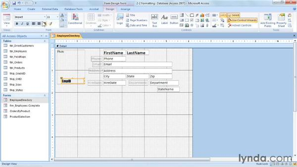 Formatting the form: Access 2007: Forms and Reports in Depth