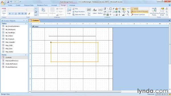 Using lines and rectangles: Access 2007: Forms and Reports in Depth
