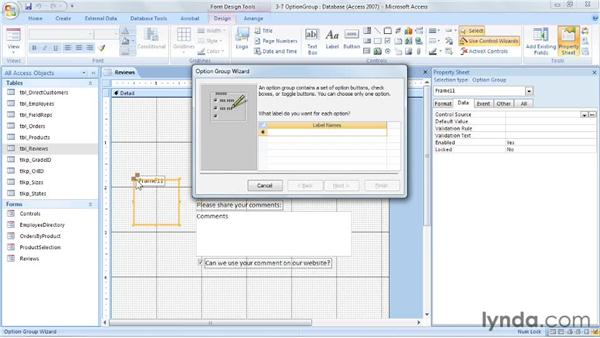 Controlling input with option groups: Access 2007: Forms and Reports in Depth