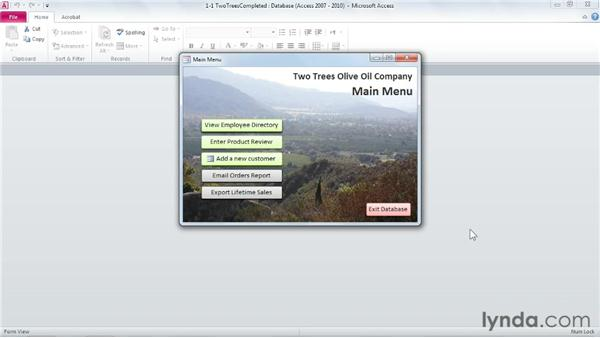 Designing for the end user: Access 2010: Forms and Reports in Depth