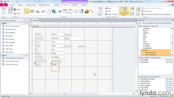 Organizing the form elements: Access 2010: Forms and Reports in Depth