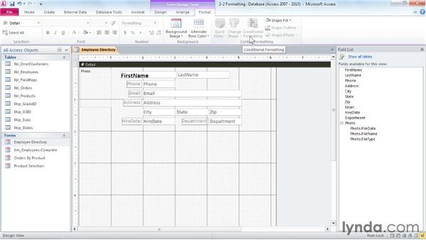 Formatting : Access 2010: Forms and Reports in Depth