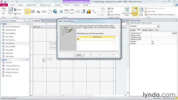 Controlling input with option groups: Access 2010: Forms and Reports in Depth