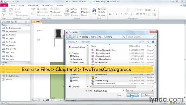 Attaching documents: Access 2010: Forms and Reports in Depth