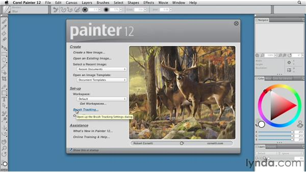 Starting Painter 12 for the first time: Painter 12 Essential Training