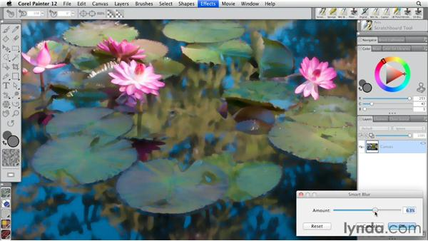 Understanding Smart Blur: Painter 12 Essential Training
