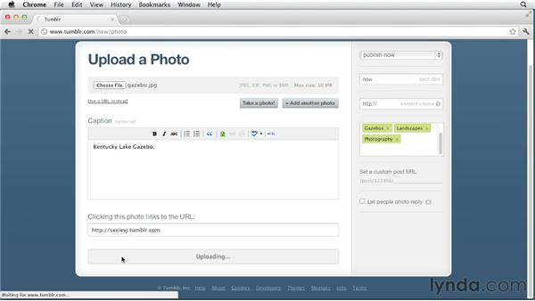 Creating photo and photoset posts: Up and Running with Tumblr