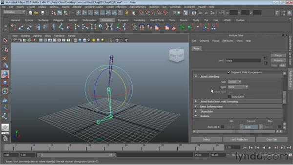 Modifying joint attributes: Character Rigging in Maya