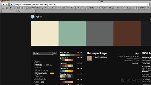 Choosing a color palette: Maximizing Your Web Video and Podcast Audience with Hypersyndication