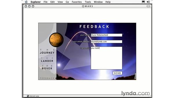 feedback form intro: Intermediate Flash MX