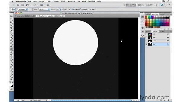 Understanding RGB: Capture NX 2 Essential Training