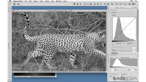 Understanding the histogram: Capture NX 2 Essential Training