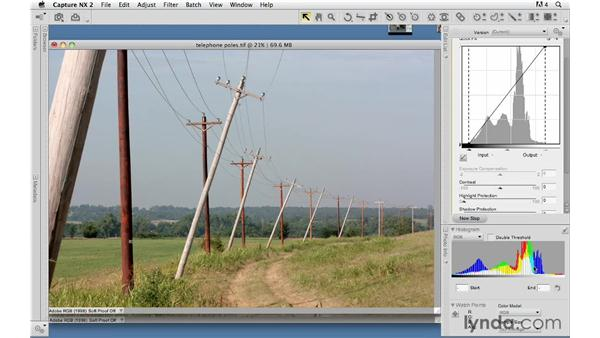 Correcting contrast with Levels: Capture NX 2 Essential Training