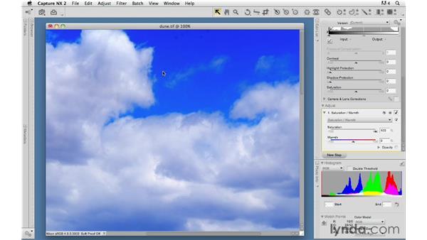 Saturation/Warmth: Capture NX 2 Essential Training