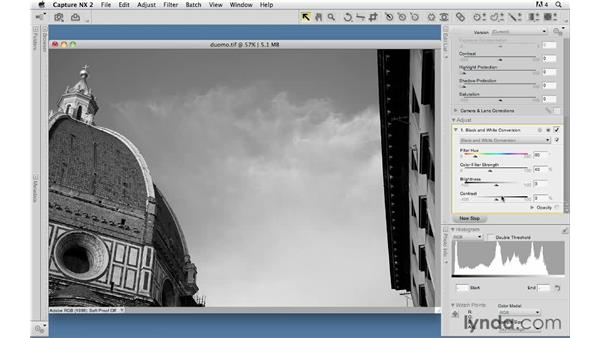 Should you buy Lynda.com - Foundations of Photography: Black and White for your Mac?