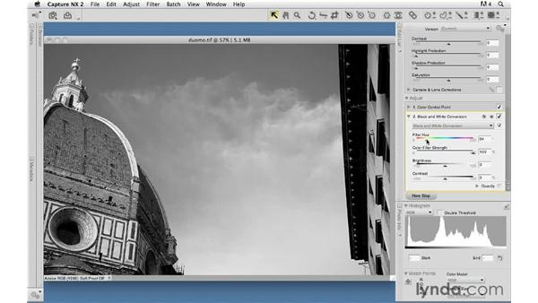 Localized editing of black-and-white images: Capture NX 2 Essential Training