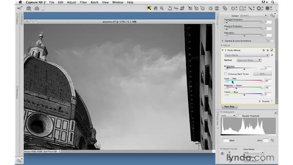 Photo effects for black and white: Capture NX 2 Essential Training