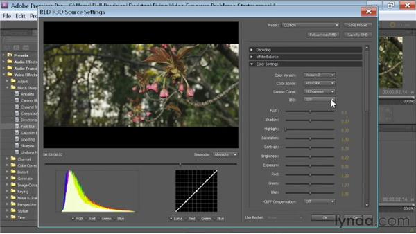Adjusting an .R3D file: Fixing Video Exposure Problems in Premiere Pro